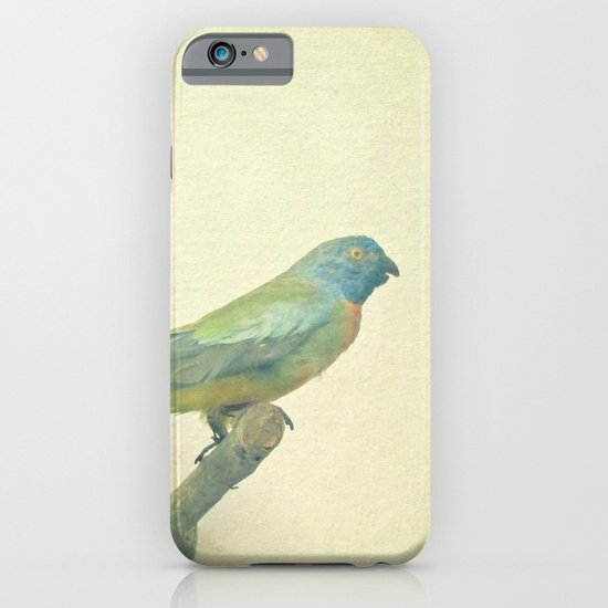 Bird Study #3 iPhone & iPod Case