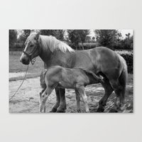 Mother and Child no.1 Canvas Print