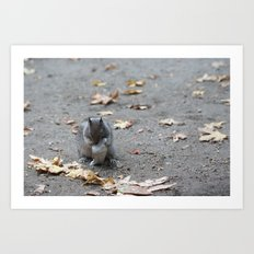 One can never capture the wild.  Art Print