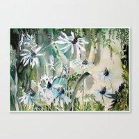 Daisy Daisy Canvas Print