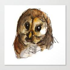 Big-eyed owl Canvas Print