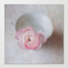 Pale Pink Textured Ranunculus Canvas Print