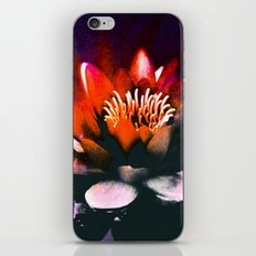 Red Water Lily iPhone & iPod Skin