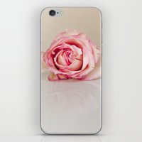 Hot Pink Rose iPhone & iPod Skin