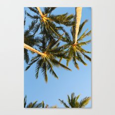 Palm Tree Heaven Canvas Print