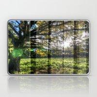 Autumn Tree Laptop & iPad Skin