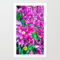 The Beauty Of The Violet… Art Print
