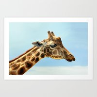 Jeffery The Giraffe Art Print