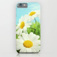 iPhone & iPod Case featuring CAMOMILLA by Ylenia Pizzetti