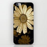 Flower Drops iPhone & iPod Skin