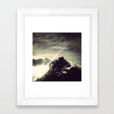 Sun setting threw the trees. Framed Art Print