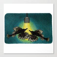 Sea Moths Canvas Print