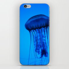 Jelly in the Blue iPhone & iPod Skin
