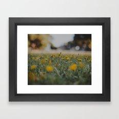 Yellow Summer Framed Art Print