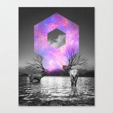 Made of Star Stuff Canvas Print