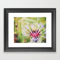 Spring Time Bumble Bee O… Framed Art Print