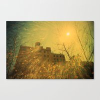 A Very Sunny Day Canvas Print