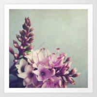Floral Variations No. 5 Art Print