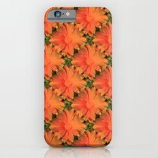 Orange Daisy Slim Case iPhone 6s