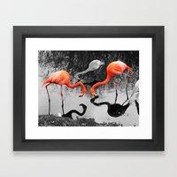 Matthew Cole Photography Framed Art Print