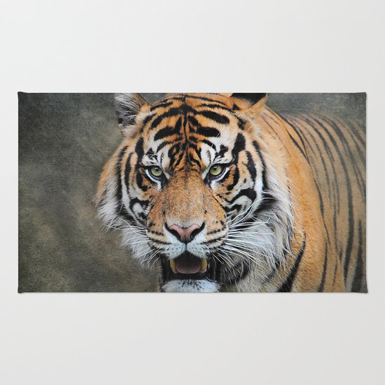 Bengal Tiger Rug By Jai Johnson