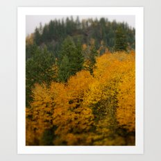 Visions of Fall Art Print