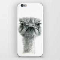 Ostrich G119 iPhone & iPod Skin