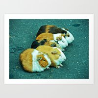 Animals On The Road Play… Art Print