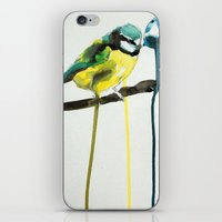 Blue Tit iPhone & iPod Skin