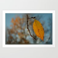 Art Print featuring Hangin' On To You by Dorothy Pinder