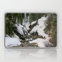 Winter's Beauty Laptop & iPad Skin