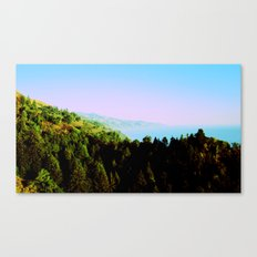 Big Sur, California Canvas Print