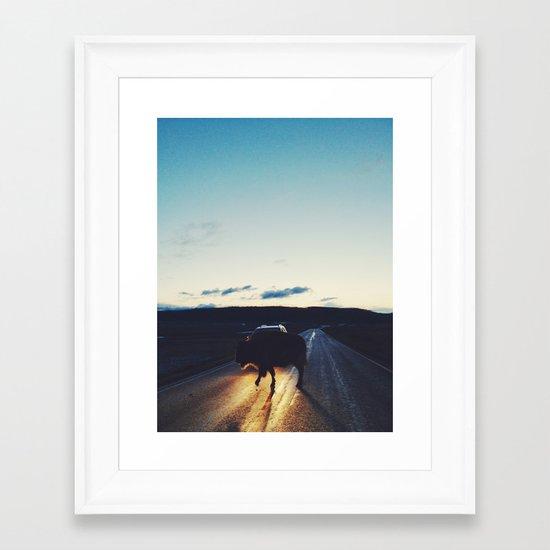 Bison in the Headlights Framed Art Print