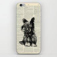Yorkie iPhone & iPod Skin