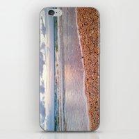 Seeing Seashells On This… iPhone & iPod Skin