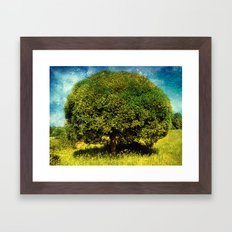 Round Tree Framed Art Print