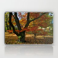 Red Autumnal Leaves Laptop & iPad Skin