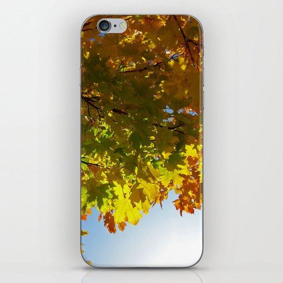 autumn tree III iPhone & iPod Skin
