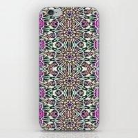 An Indian Garden iPhone & iPod Skin