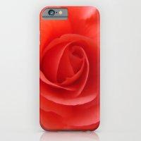 Rose Delicate iPhone 6 Slim Case