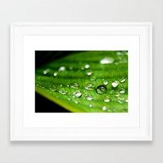 Teardrops Framed Art Print