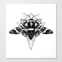 Geometric Moth Canvas Print