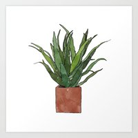 Aloe Vera - Watercolor I… Art Print