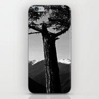 hurricane ridge . ii iPhone & iPod Skin