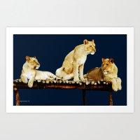 Siblings On Blue Art Print