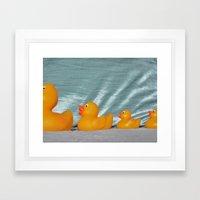 Swimming Ducks Framed Art Print