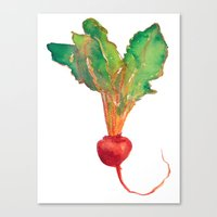 red beet Canvas Print