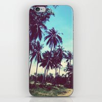 Road of palm trees iPhone & iPod Skin