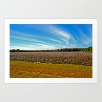 Cotton and Clouds Art Print
