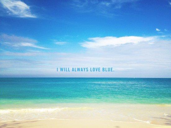 I Will Always Love Blue. Art Print